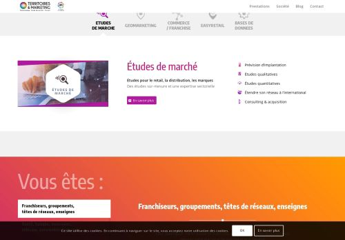 territoires-marketing.fr Desktop Screenshot